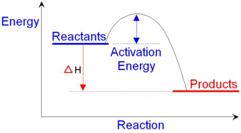 exothermic energy diagram image gallery exothermic graph