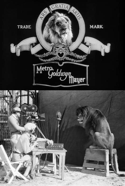roaring lion film logo 219 best images about movie studios on pinterest gone