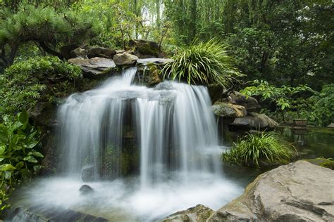garten quelle fond d 233 cran jardin rivi 232 re chute d eau source plantes