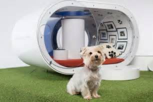dream dog houses samsung dream dog house for 30k your dog could have a hot tub fortune