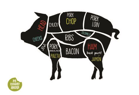 what part of the pig does bacon come from diagram pin by the foodies larder on dishes