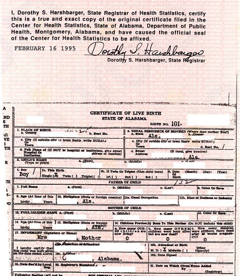 What Is A Birth Record Doc C S Birth Certificate Obama Conspiracy Theories