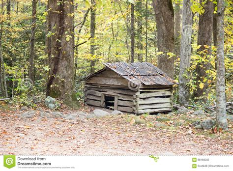 old dog house house in the forest royalty free stock photography cartoondealer com 61865291
