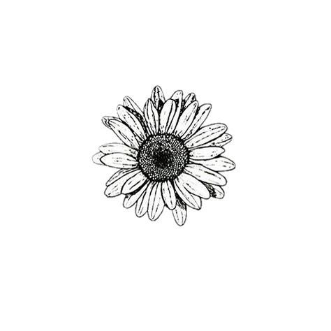 black and white flower background background black white flower aesthetic