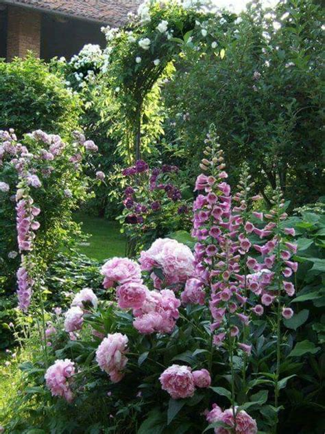 Peony Garden Cranberry Design Ideas 25 Best Ideas About Peonies Garden On Pinterest Peony Plant Peony Care Tips And Peony Care