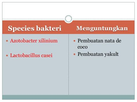 pembuatan yakult melibatkan bakteri ciri umum 5 kingdom