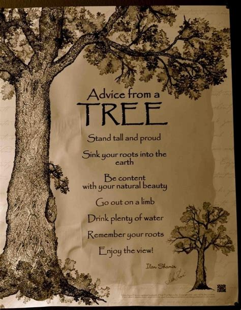 like trees books tree quotes about quotesgram
