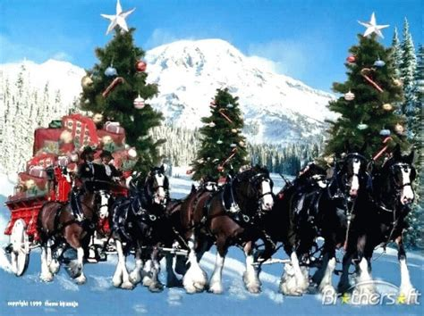 christmas wallpaper with horses clydesdales christmas wallpaper wallpapersafari