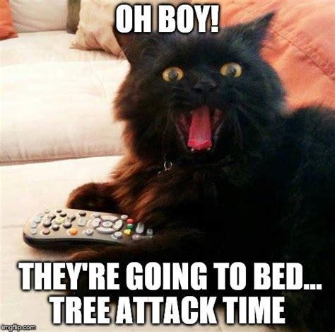 cat on top of christmas tree meme cat tree meme great printable calendars