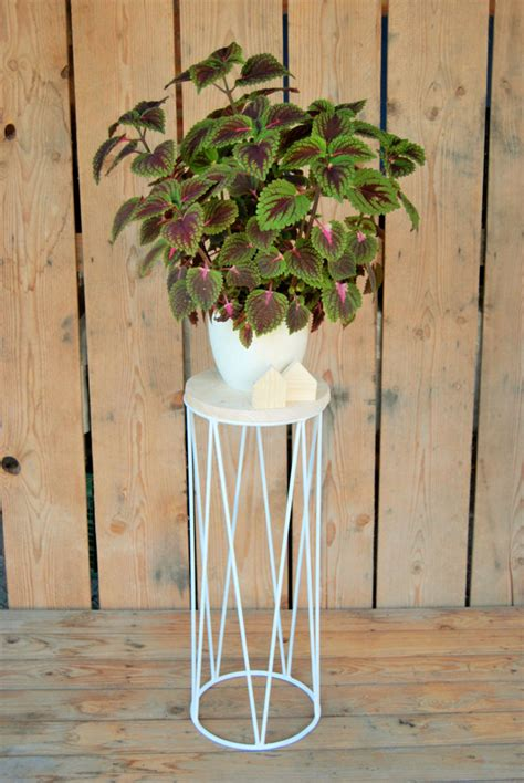 modern plant stands put  favorite plants