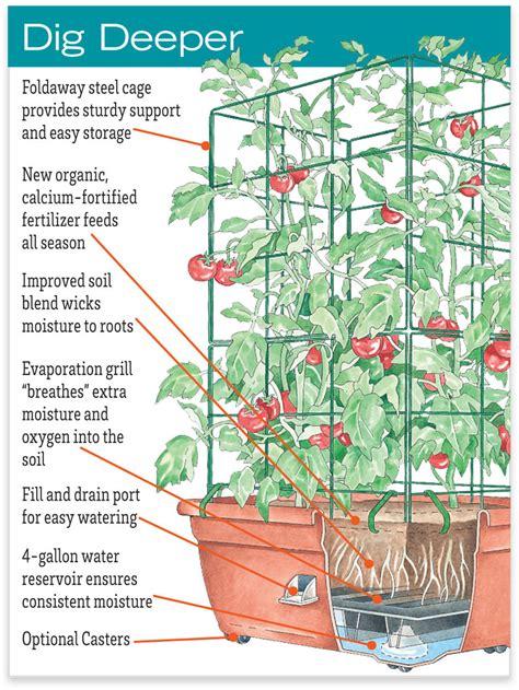 tomato planter organic tomato success kit gardenerscom