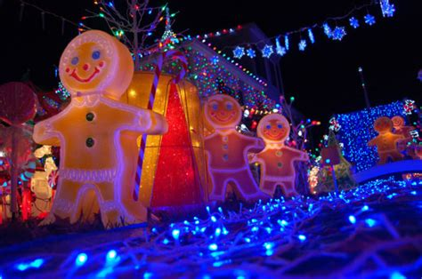 where to see the best christmas lights and a lobster trap
