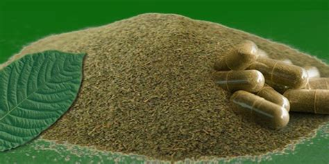 Detox From Heroin On Kratom by Kratom Is Causing Relapses Around The