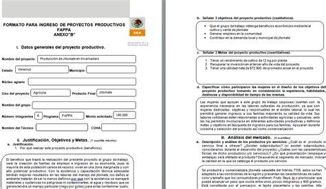 ejemplos de proyectos pedagogicos de aula gratis ensayos image gallery ejemplo proyecto