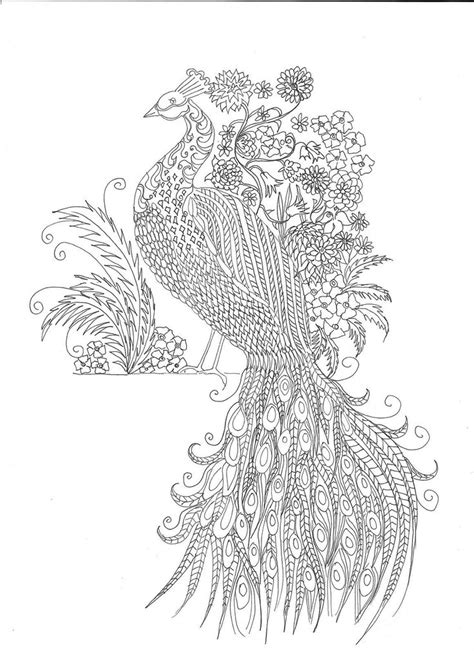 coloring pages printable peacocks stress relief coloring pages coloring pages printable peacocks stress relief coloring pages