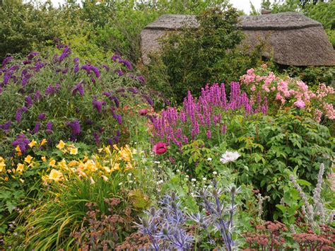 Cottage Garden Design Plants Structure Proximity Saga Flowers For A Cottage Garden