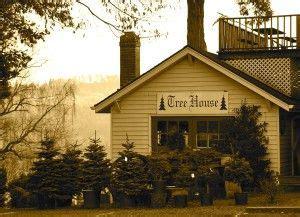christmas tree farm sherwood oregon the world s catalog of ideas