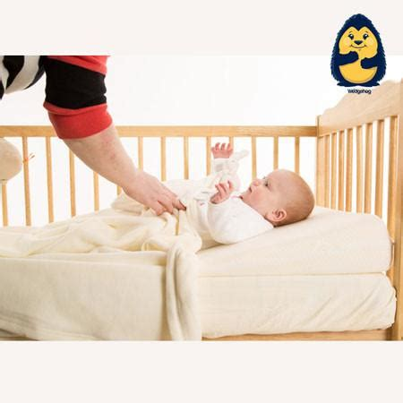 sleep safe standard pillow encasement 50x75 cm bed bug wedgehog reflux wedge cotbed 70cm includes reflux