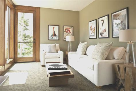 apartment living room ideas  fireplace unique
