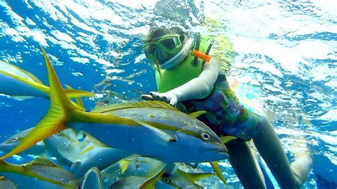 jual snorkel lengkap yuk eksplore keindahan bawah laut tokoonline88