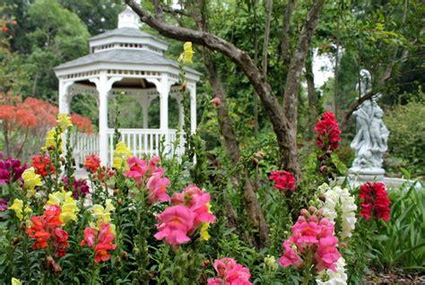 Botanical Gardens Gainesville Kanapaha Botanical Gardens Gainesville Florida Afar