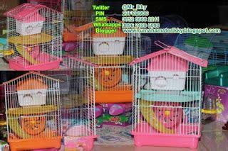 Kandang Kucing Yang Bisa Dibawa Kemana Mana jual hamster mini untuk jambi sekitarnya new list cage