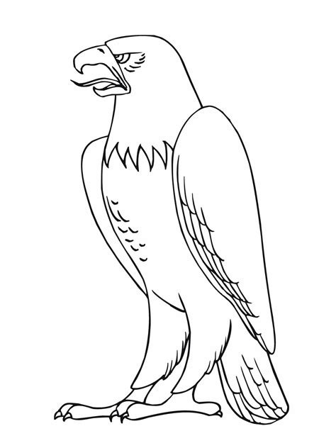 coloring page of an eagle free printable eagle coloring pages for kids