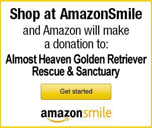almost heaven golden retriever rescue almost heaven golden retriever rescue and sanctuary inc a 501 c 3 non profit