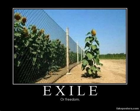 exile or freedom homeopathy capsicum pinterest