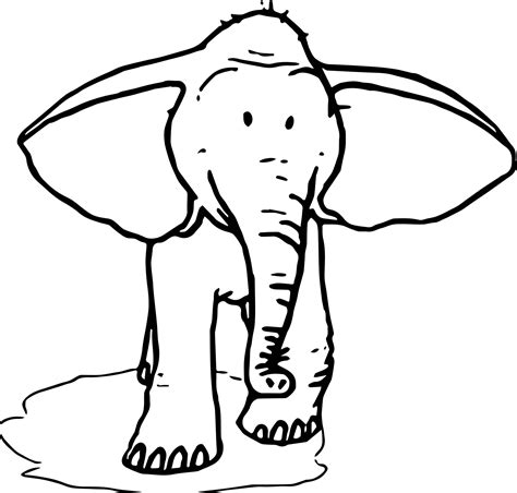 elephant ear coloring page elephant ear template printable sketch coloring page