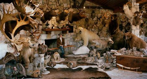 taxidermy home decor taxidermy decor how much is overkill