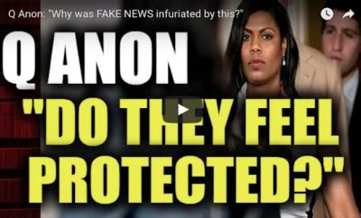 """q anon: """"why was fake news infuriated by this?"""" – the phaser"""