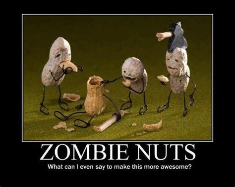 Zombie Meme - something geeky this way comes zombie memes