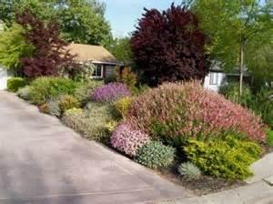 California Backyard Sacramento Drought Resistant Landscapes For The Sacramento Area