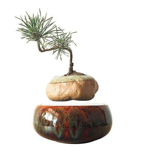 vasi per bonsai prezzi bonsai vasi di ceramica acquista a poco prezzo bonsai vasi