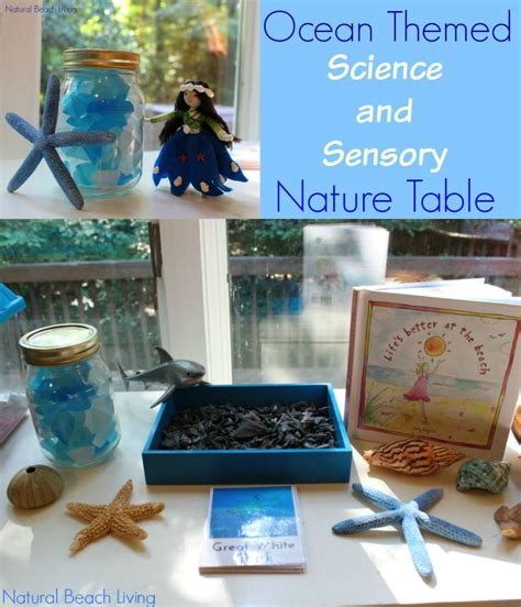 nature themed events the best ocean themed science sensory nature table