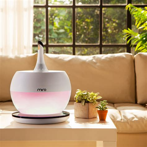 humidifier  winter cold reviews guide july