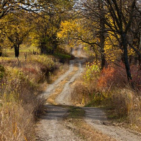 dirt road country road on the road again trees grey snow winter of nature country side poet an dirt road