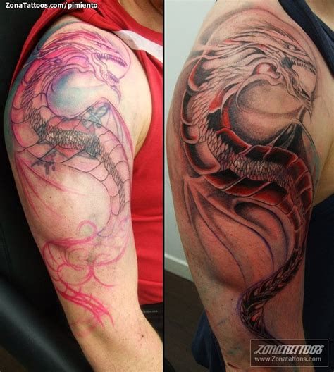 fotos de tattos tatuajes de dragones fotos y tattoos tattoo design bild