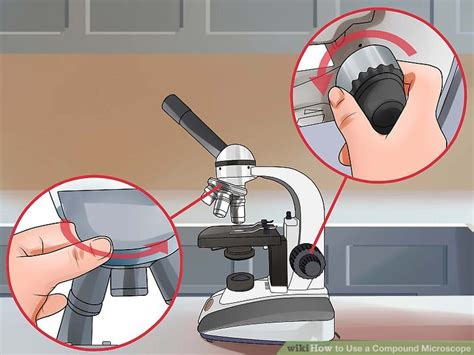 what is a compound light microscope how to use a compound light microscope by
