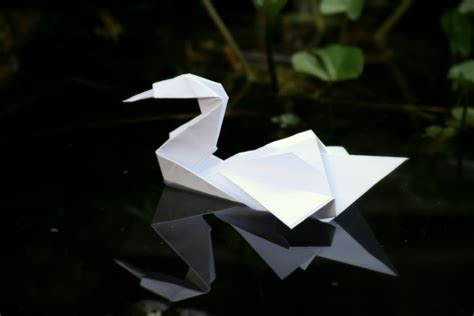 how to do origami swan origami swan by xsanaanx on deviantart