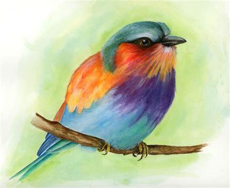 1000 ideas about watercolor bird 43 best vogels tekenen en textuur images on