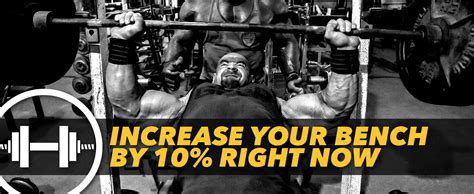how to increase your bench increase your bench press free 28 images increase your