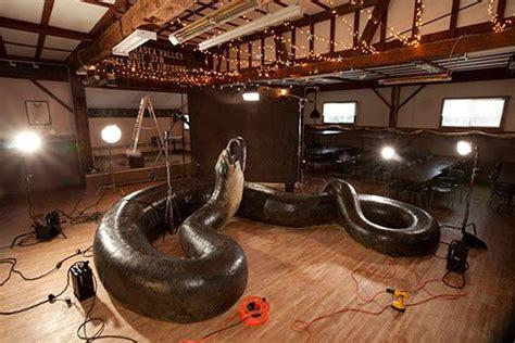 Korek King Yellow Ular Plus Asbak how titanoboa the 40 foot snake was found science smithsonian