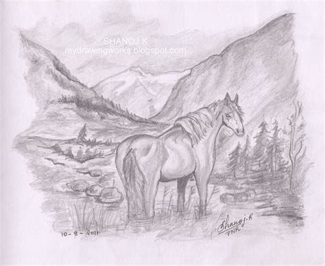 pencil sketch drawing images pencil drawing hourse rainbow the colour of