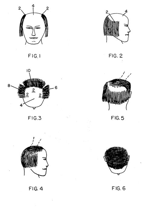 donald hair diagram i don t understand the physics donald s hair
