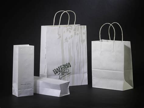 Craft With Paper Bags - china craft paper bag china craft paper bag shopping bag