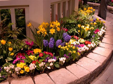Types Of Garden Flowers Care Garden Flowers With The Best Plant Selection Typesofflower