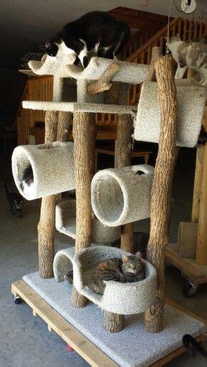 Handmade Cat Furniture - cat tree adoption facility