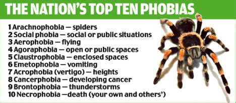 8 Most Common Phobias And How To Fight Them by Anxiety Disorders Phobias Psych Tutor